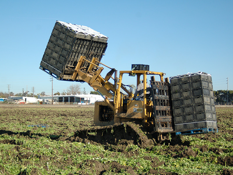 loader-raised