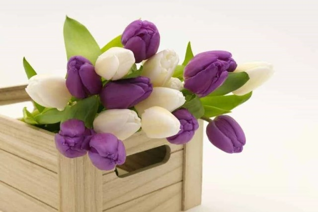How to Send Flowers and Gifts Online?