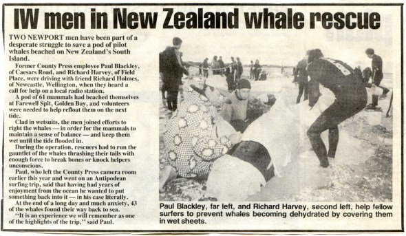 Islanders save the whales