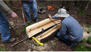 The work of further splitting the log can be completed using a wedge and sledge hammer. Wedges are placed inside the split that develops along the log's length and is then hammered into the log, causing the crack to widen until finally the log splits in two (Photo Credit: Colin Connors)