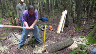 The same process of scoring, hammering from the edge, and wedging from the side is used to further split the log into quarters. Note finished rough cut planks behind. By doing the work in the forest, the crew reduces the amount and weight of the wood that must be hauled back to the road and placed in Wayne's truck. Unwanted pieces, stripped bark, and wood splinters are left to return to the soil. Larger pieces can be returned to for other projects requiring cedar. (Photo Credit: Colin Connors)