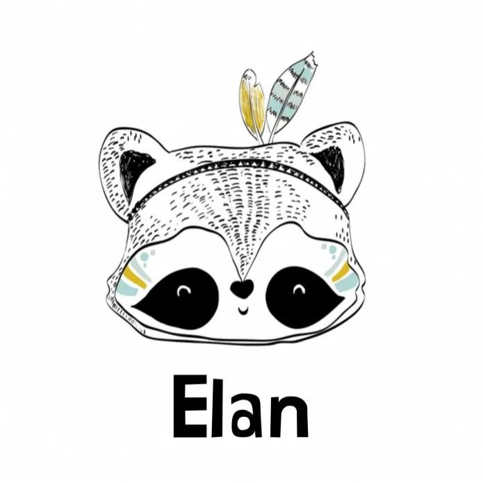 Zwart-wit geboortekaartje Elan