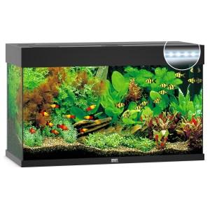 Juwel Aquarium Rio 125 Led 80x35x50 cm - Aquaria - Zwart Ca. 125 L