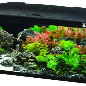 Trofis Start 60 Zwart Aquarium