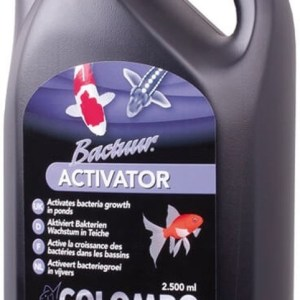Bactuur Activator 2500 Ml | Colombo