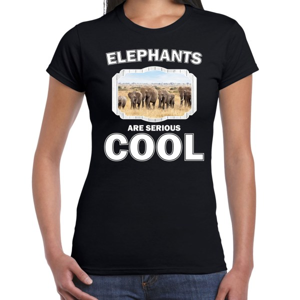 Dieren olifant t-shirt zwart dames - elephants are cool shirt - kudde olifanten
