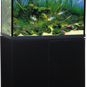 Trofis Colisa A-800 Zwart Aquarium + LED -