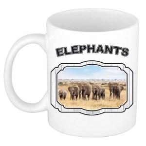 Dieren kudde olifanten beker - elephants/ olifanten mok wit 300 ml