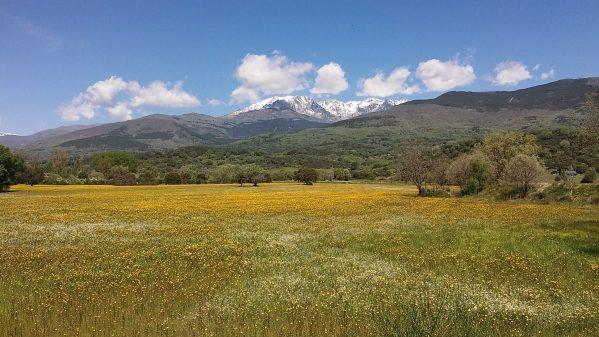 Single Reis Wandelen Sierra de Gredos Carnavalsspecial 8 dagen