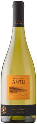 Montgras Antu Chardonnay Image