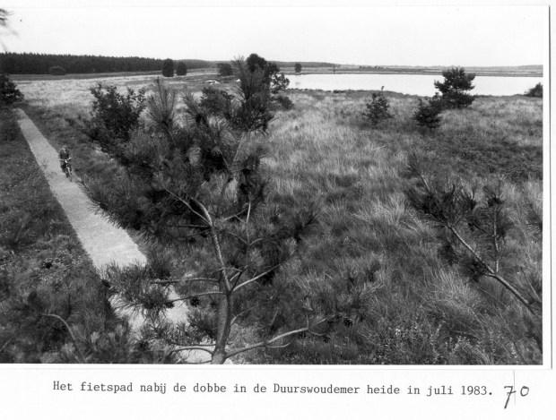 HF Duerswald Durk 70