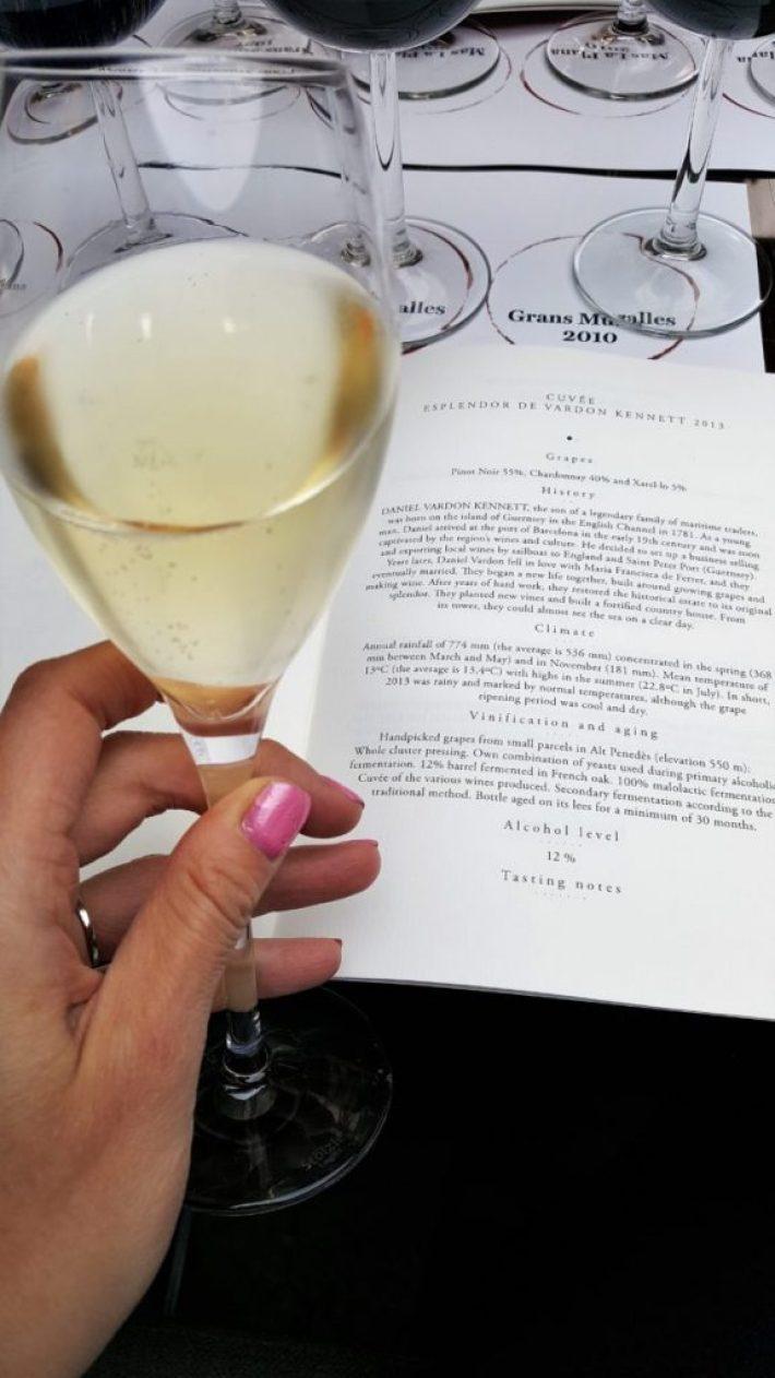 Torres wijn wijnproeverij bubbels