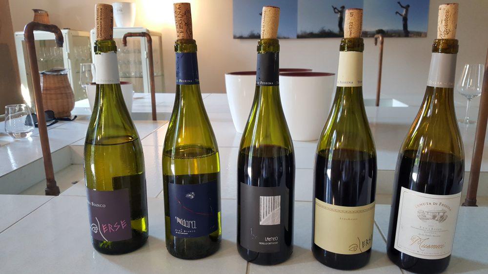 Siciliaanse wijn proeven en wijnhuizen op Sicilië: Tenuta di Fessina wijnproeverij