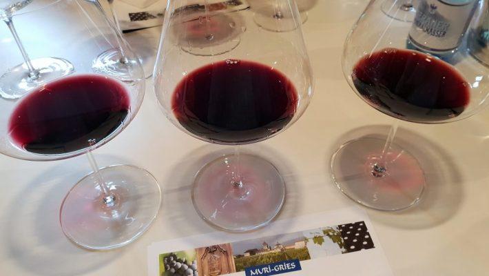 Wijnen proeven bij Muri Gries