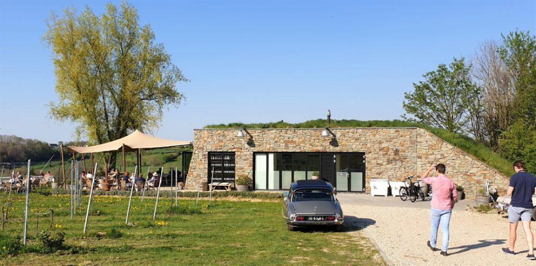 wijnreis naar Limburg: bezoek wijngaard St. Martinus
