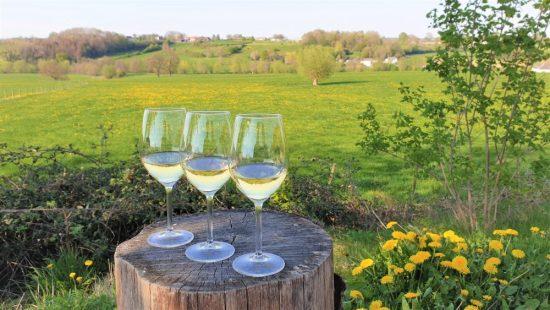 Wijn uit Limburg