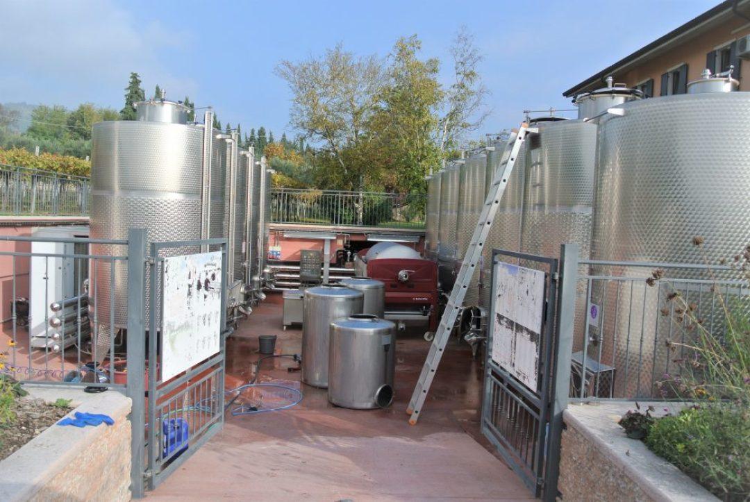 wijnreis naar Valpolicella: Tenute Ugolini wijnmaker