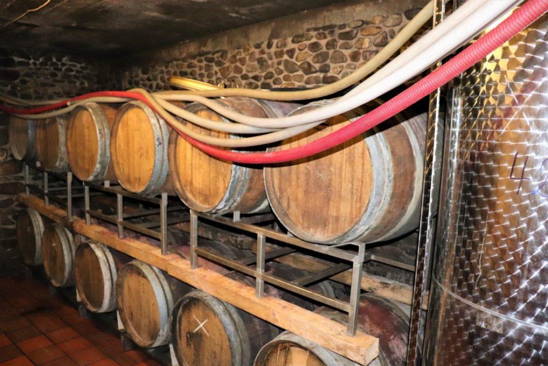 Wijnreis Moezel en Duitse wijn: Sektgut Heinz Schneider wijnkelder