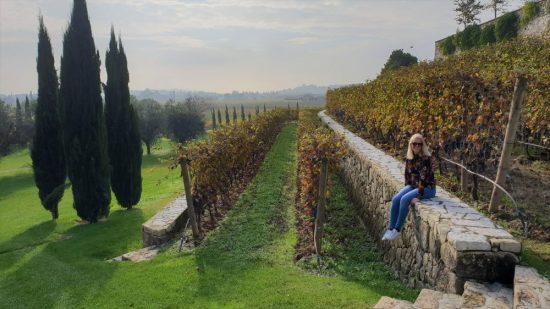 wijnreis naar Valpolicella