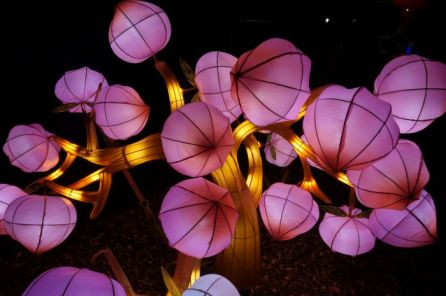 China light festival Utrecht