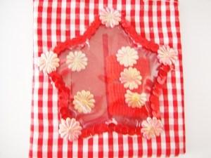 Detská luxusná kockovaná taštička pre malé princezné sa vždy hodí. Obsahuje gumičky s ozdobou a sponky. Je praktická a vyrobená z výborného materiálu.Farba- červená. Rozmer: 10cm x 21cm.