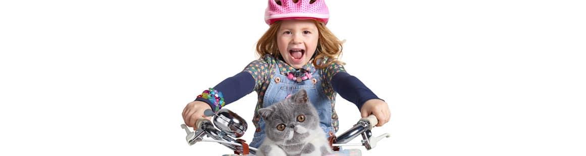 """singitkitty Three - """"Sing It Kitty"""""""
