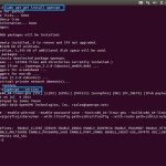 Astrill Setup Manual How To Configure Openvpn With Openvpn Client On Linux Astrill Wiki