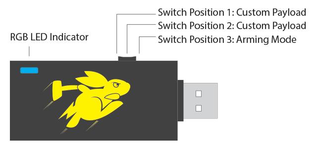 Bash Bunny Switch Diagram
