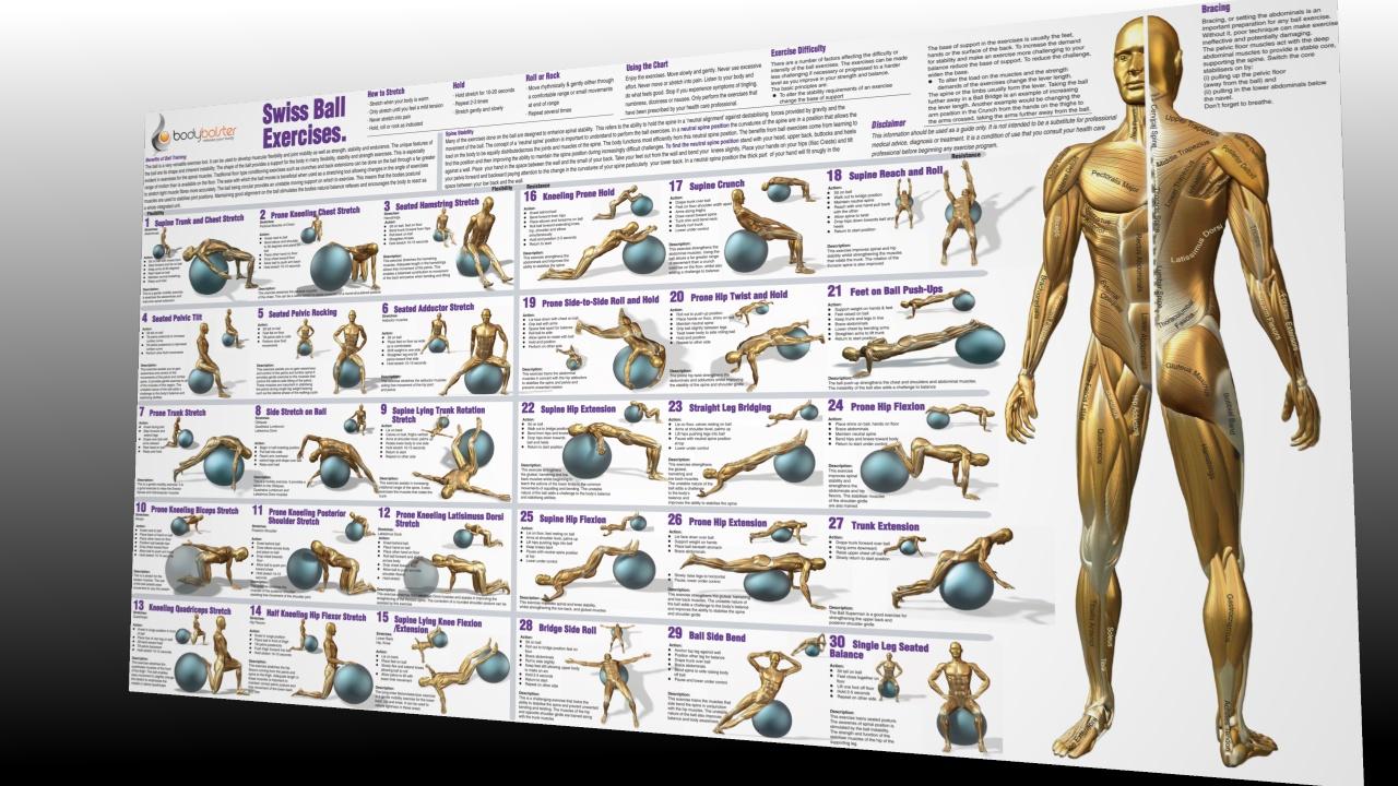 Swiss Ball Exercise Chart