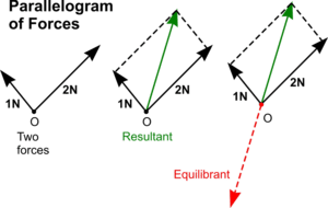 Force Vector Diagrams Force Of Gravity Wiring Diagram ~ Odicis