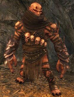 Ogre Guild Wars 2 Wiki Gw2w