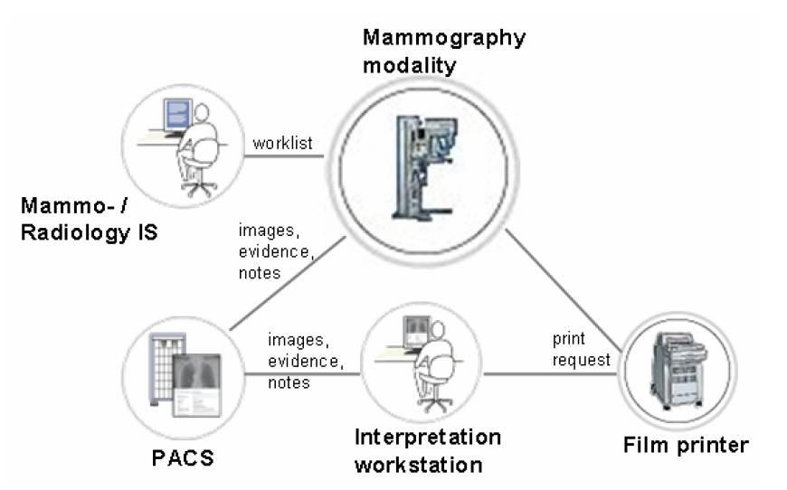 Mammography: Mammography Wiki