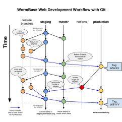 Software Release Process Flow Diagram 2016 Dodge Durango Alternator Wiring Development Workflow - Webdev Wormbasewiki