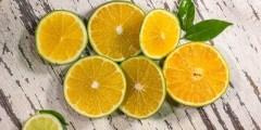 الليمون فوائده واستعمالاته