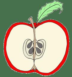 clip art red apple clipart [ 1000 x 1000 Pixel ]