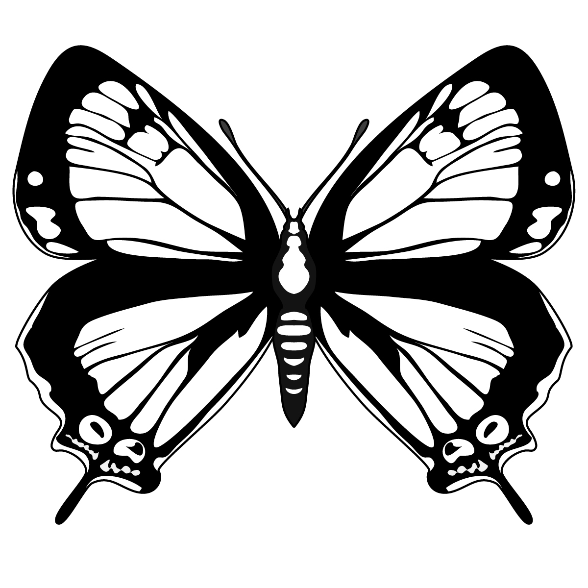 Butterfly Black And White Butterfly Clipart Black And White 5