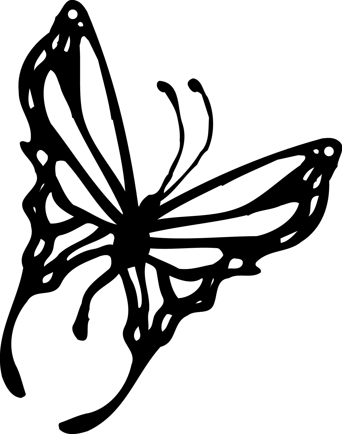 Butterfly Black And White Butterfly Clipart Black And White Free
