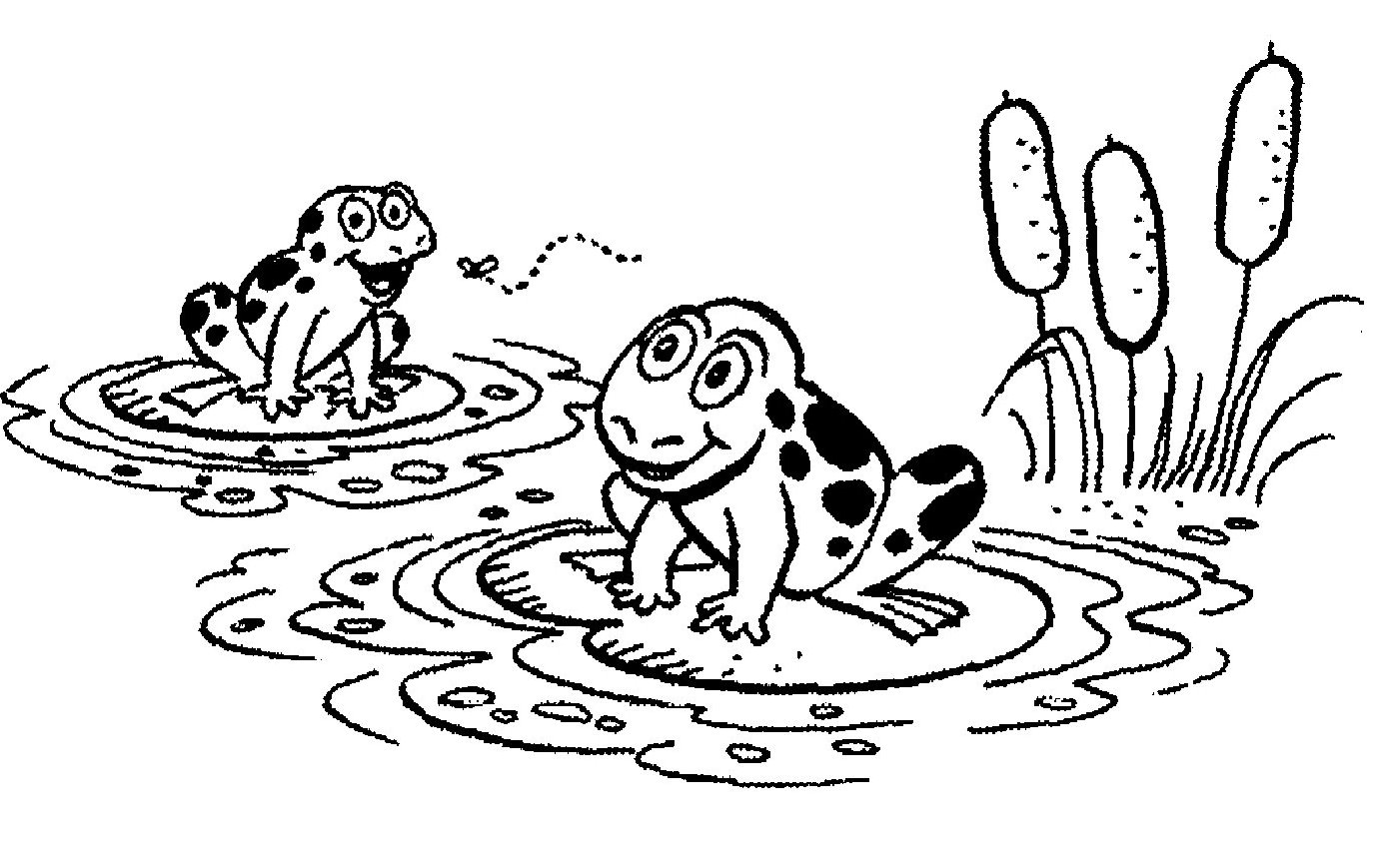 hight resolution of cute frog clipart black and white photo 11