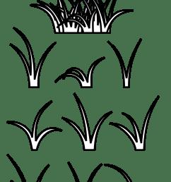 grass clipart clipart [ 1969 x 2757 Pixel ]
