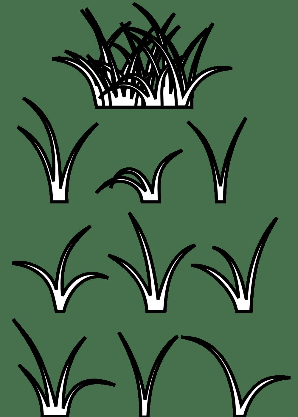 medium resolution of grass clipart clipart