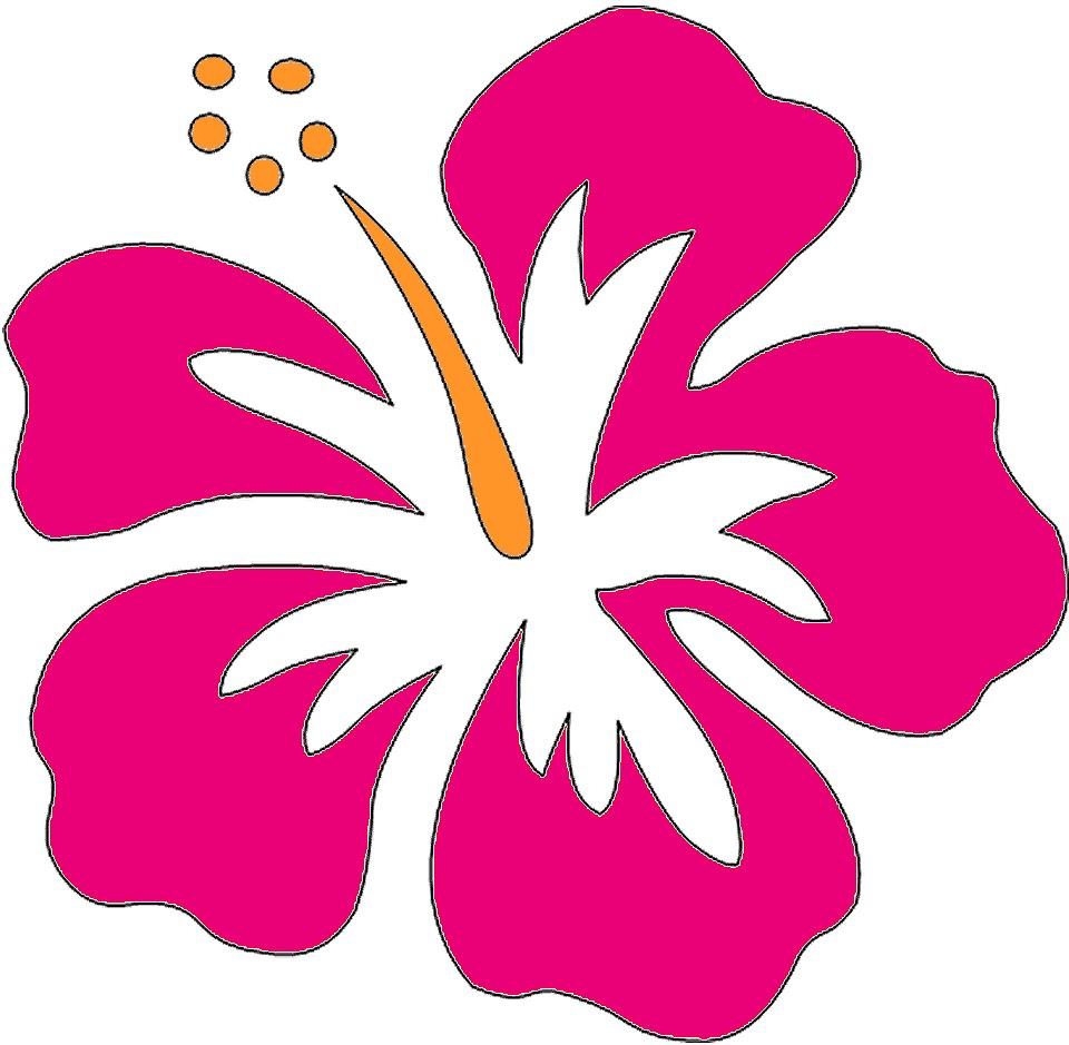 medium resolution of hawaiian luau food clipart