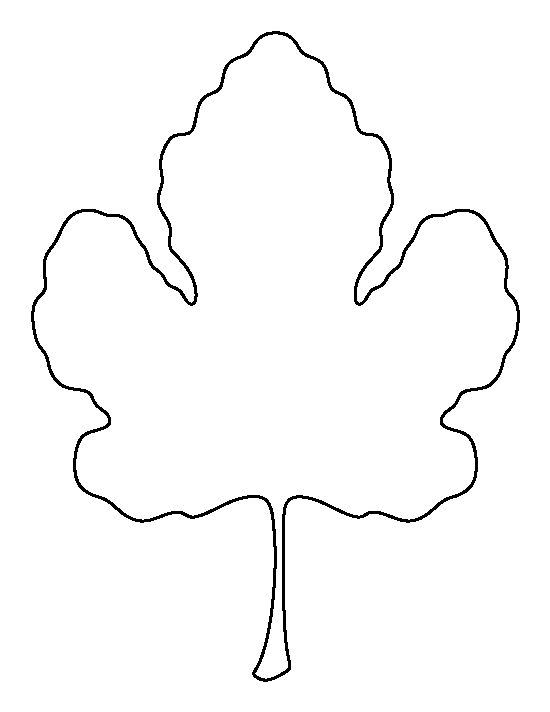 Leaf outline fig leaf pattern use the printable outline
