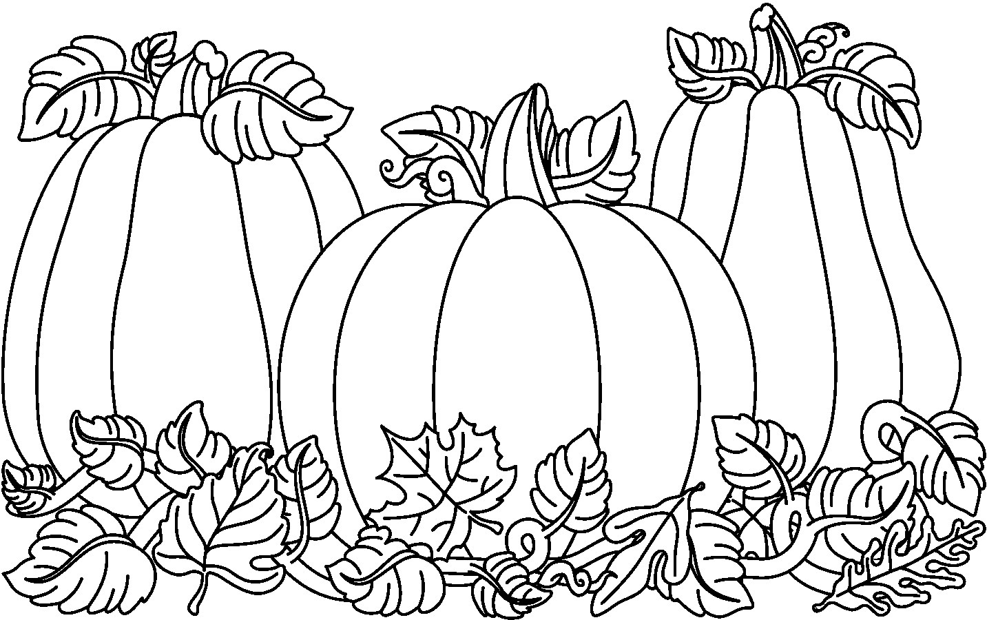 Pumpkin Black And White 0 Images About Halloween On