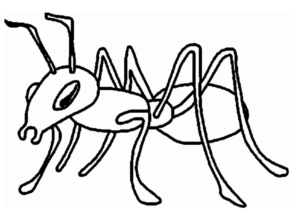 hight resolution of cartoon ant clipart 2