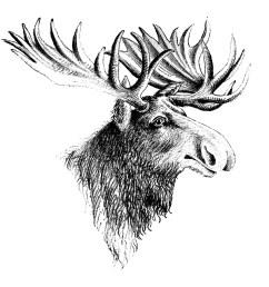 cartoon moose clipart free clip art images image 9 3 [ 1350 x 1401 Pixel ]