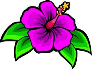 hawaiian flower 0 images