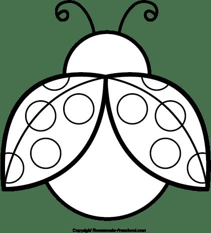 ladybug outline black