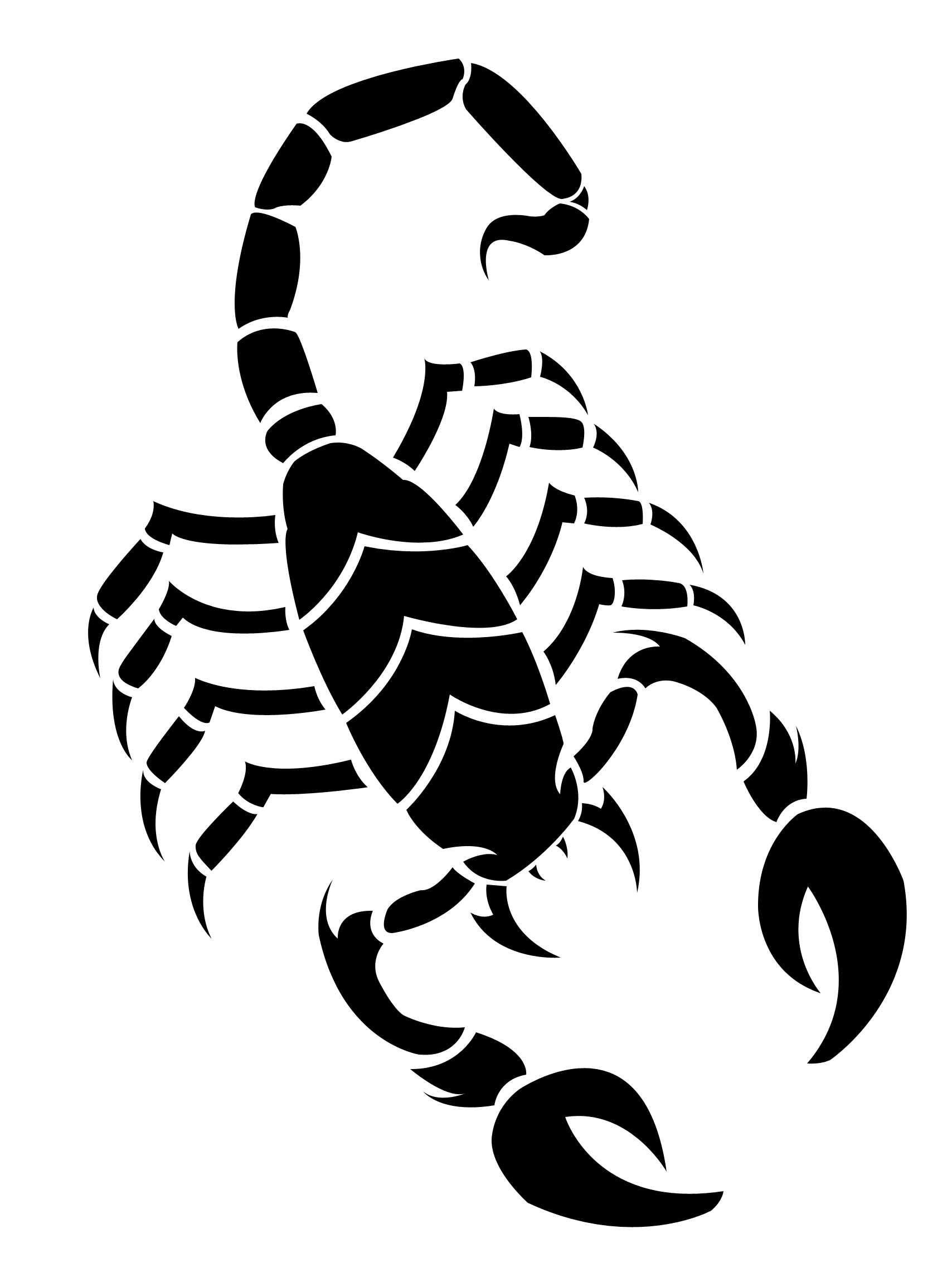 Scorpion Drawing Clipart