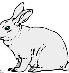 bunny black and white bunny black and white rabbit clipart 3 [ 999 x 889 Pixel ]