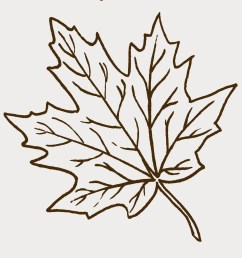 leaf black and white fall leaves clipart black and white clipartfest [ 1400 x 1368 Pixel ]